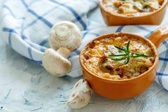 Зажаренный в духовке gratin грибов, цыпленка и сыра в лотке Стоковые Изображения