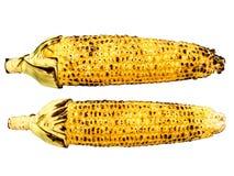 Зажаренный в духовке изолированный стержень кукурузного початка Стоковое фото RF