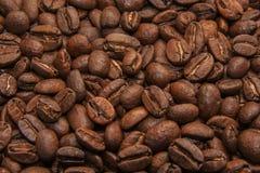 зажаренный в духовке кофе фасолей предпосылки Стоковая Фотография RF