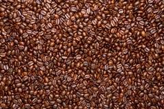 зажаренный в духовке кофе фасолей предпосылки Стоковая Фотография