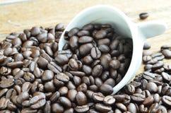зажаренный в духовке кофе фасолей стоковое изображение rf