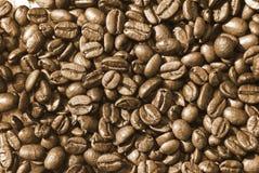 зажаренный в духовке кофе фасолей Стоковая Фотография