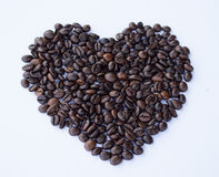 зажаренный в духовке кофе фасоли Стоковое Фото