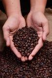 зажаренный в духовке кофе Стоковая Фотография RF