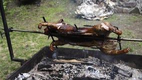 Зажаренный в духовке свинина сосунка поросенка зажарил вращая курят BBQ, который акции видеоматериалы