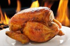 Зажаренный в духовке цыпленк цыпленок Стоковое Фото