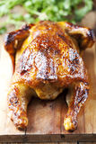 зажаренный в духовке цыпленок Стоковое Изображение RF