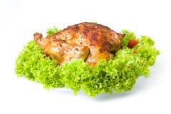зажаренный в духовке цыпленок Стоковые Фото