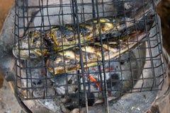 Зажаренный, гриль, топление стали железное, огонь плиты палил еду Стоковое Изображение RF