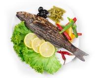 Зажаренный морской волк с овощами Стоковое Изображение