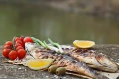 Зажаренный морской волк с томатом, лимоном и розмариновым маслом Стоковые Изображения RF
