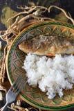 Зажаренный окунь с рисом Стоковые Изображения RF