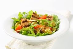 Зажаренный пирожок с салатом свежего овоща Стоковая Фотография RF