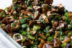 Зажаренный салат гриба с петрушкой, луком и укропом Стоковое Изображение