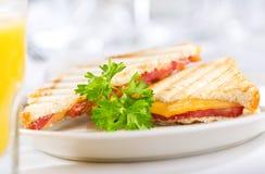 Зажаренный сандвич сыра стоковое фото