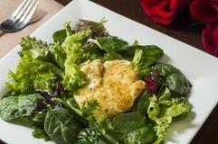 Зажаренный салат козий сыра Стоковое фото RF