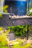 Зажаренный стейк варя на открытом барбекю Стоковая Фотография RF