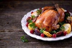 Зажаренный цыпленок на официальный праздник в США в память первых колонистов Массачусетса с мозолью, сливой, кизилом и петрушкой Стоковые Изображения