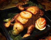 зажаренный цыпленок яблока Стоковые Фотографии RF