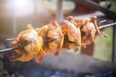 Зажаренный цыпленок на вращая машине Стоковая Фотография RF