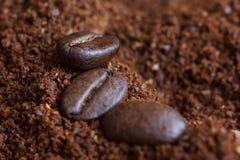3 зажаренных в духовке кофейного зерна на земном кофе Стоковое Изображение