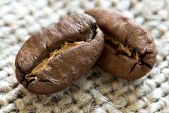 2 зажаренных в духовке кофейного зерна на предпосылке ткани Стоковые Фотографии RF