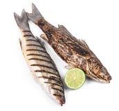 2 зажаренных рыбы на белизне Стоковые Изображения RF