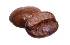 2 зажарили в духовке кофейные зерна изолированные на белой предпосылке Полная глубина поля стоковое изображение rf