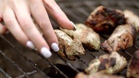 зажженное мясо E акции видеоматериалы