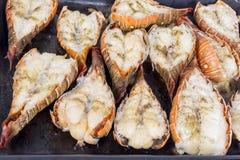 Зажженные омары Стоковые Фото
