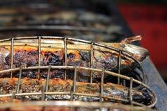 зажженные рыбы Стоковое Изображение RF