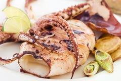 зажженные рыбы cuttle Стоковое Изображение