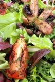 зажженные среднеземноморские салаты Стоковые Изображения RF
