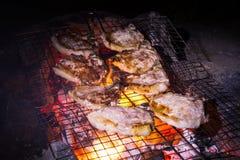 Зажженные стейки свинины Стоковая Фотография