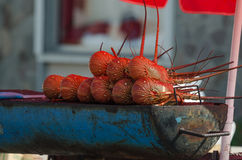 зажженный омар Стоковые Фотографии RF