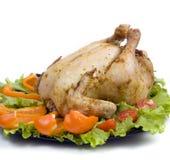 зажженный цыпленок Стоковые Фото
