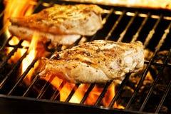 зажженный цыпленок стоковая фотография