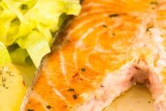 Зажженный salmon крупный план Стоковое Изображение