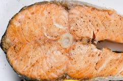 Зажженный salmon крупный план Стоковая Фотография RF