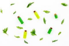Заживление концепция масла можжевельника Aromatheraphy вдоль предпосылки ветви carpeting создающ земной можжевельник впечатления  Стоковые Фотографии RF