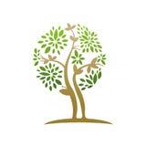 Заживление значок лист дерева Стоковая Фотография RF