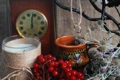 Заживление травы, divination Стоковая Фотография