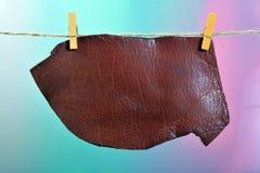 Зажимки для белья и блокнот Стоковая Фотография RF