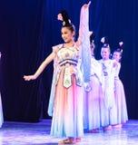 Зажиточная династия тяни 5 - китайское классическое шоу Танц-градации отдела танца стоковое фото rf