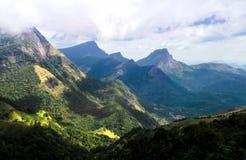 Зазор ` s Corbet - изображение леса консервации костяшек, Шри-Ланки стоковое фото rf