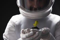 Заинтересованный космонавт открывает новый организм стоковая фотография rf