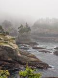 Заискивание накидки в тумане Стоковые Фотографии RF