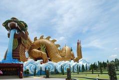 заискивая дракон Стоковое Фото