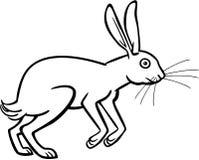 Зайцы накидки иллюстрация штока