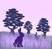 зайцы бесплатная иллюстрация